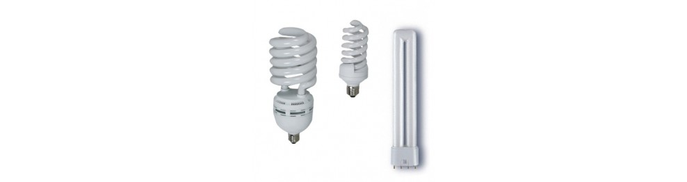 Fluorescent and Led lamp